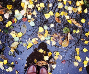 boots, leaves, and tumblr image