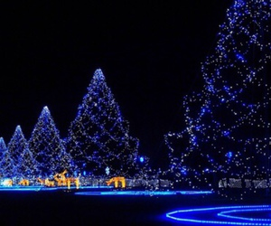 christmas, light, and blue image
