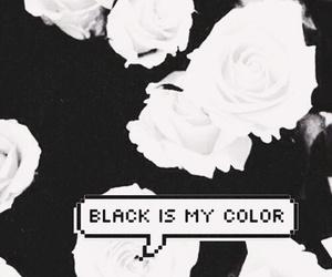black, wallpaper, and rose image