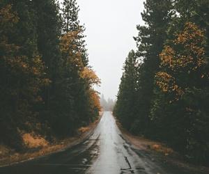 rain and road image