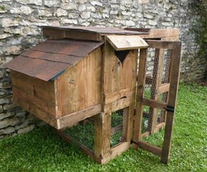 chicken coop, pallet upcycled, and pallet recycled image