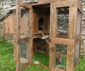 chicken coop, pallet upcycled, and chicken house image
