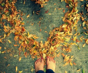 autumn, heart, and fall image