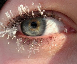 eye, eyes, and snow image