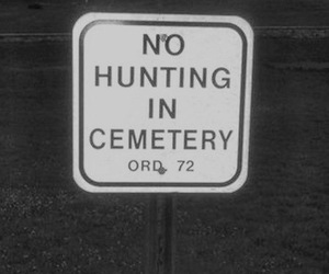 cemetery, hunting, and supernatural image