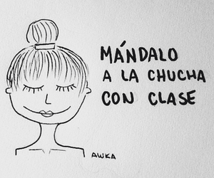 chile, frases chilenas, and chilensis image