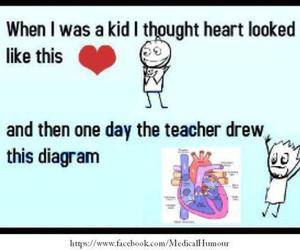 funny, heart, and diagram image