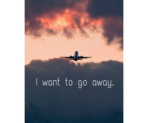 fly, go away, and sad day image