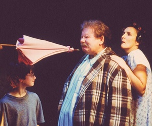 harry potter, hp, and vernon dursley image