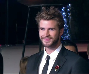 hunger games, liam hemsworth, and mockingjay image