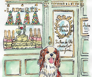 bakery, dog, and drawing image