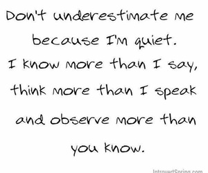 quiet, quotes, and observe image