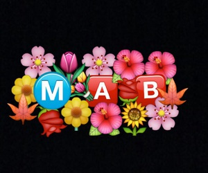 flowers and backgrounds image
