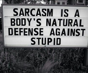 aphorism, black&white, and sarcasm image