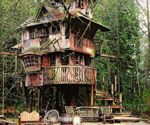 house, tree house, and treehouse image