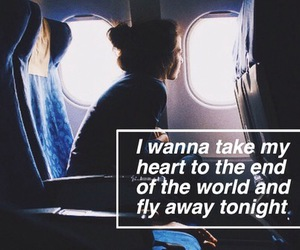 fly away, 5sos, and grunge image