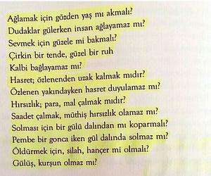 kitap, sözler, and türkçe image