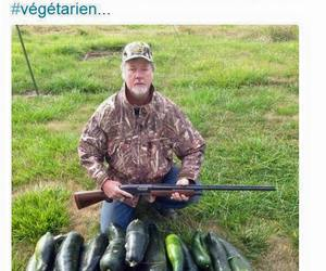 funny and vegetarian image