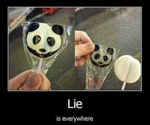 lies, panda, and lol image