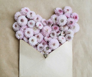 flowers, Letter, and pink image