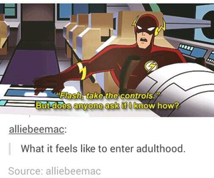funny, tumblr, and the flash image