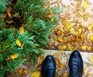 autumn, beijing, and foot image