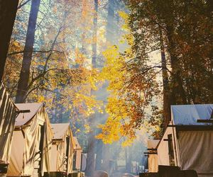 camping, outdoors, and wild image