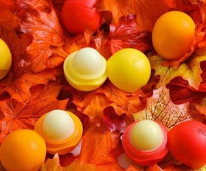 eos, cute, and fall image
