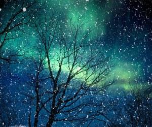 night, snow, and tree image
