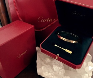 accessories, fashion, and cartier image
