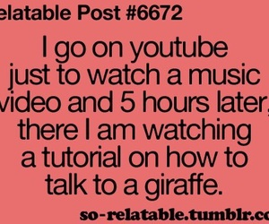 youtube, funny, and true image