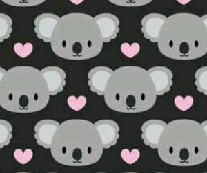 Koala and wallpaper image