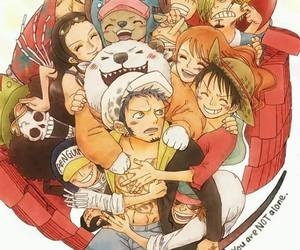 one piece, straw hat pirates, and heart pirates image