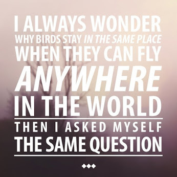 quote, bird, and text image