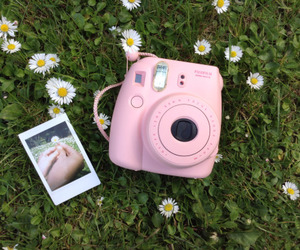 instax, camera, and flowers image
