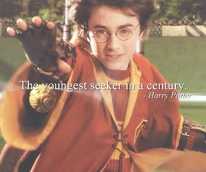 harry potter, seeker, and quidditch image