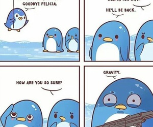 funny, penguin, and lol image