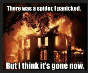 fire, funny, and house image