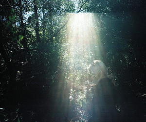 forest, girl, and sun image