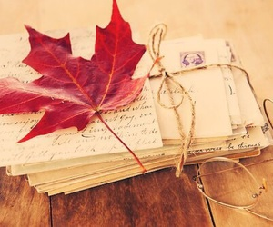 autumn, letters, and leaves image