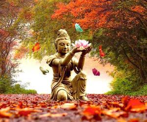 Buddha and lotus image
