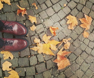 autumn, cold, and shoes image