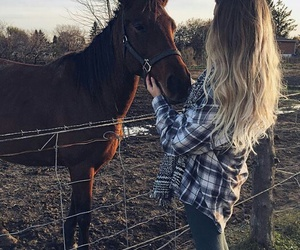 horse, girl, and hair image