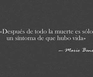 frases, vida, and quote image