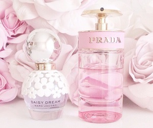 Prada, pink, and perfume image