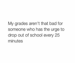 drop out, grades, and lol image