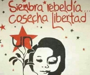 frases, libertad, and rebeldía image