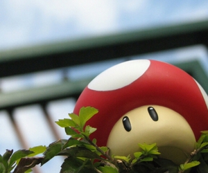 mario, photography, and cute image