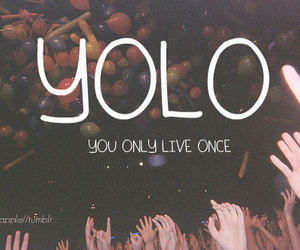 yolo and text image