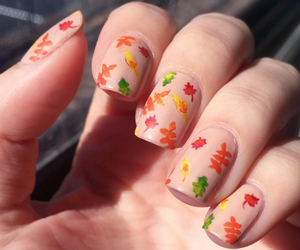 autumn, leaves, and nail art image